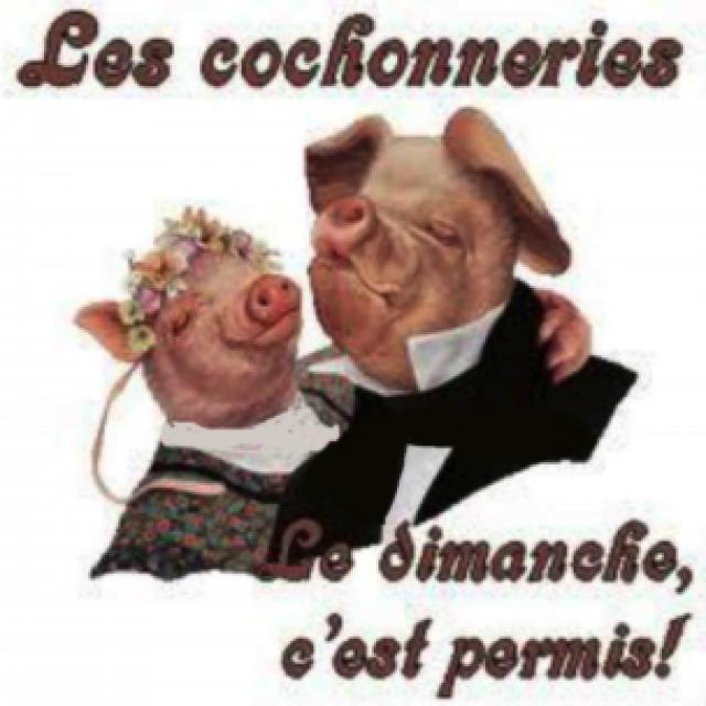 Les Cochonnailles